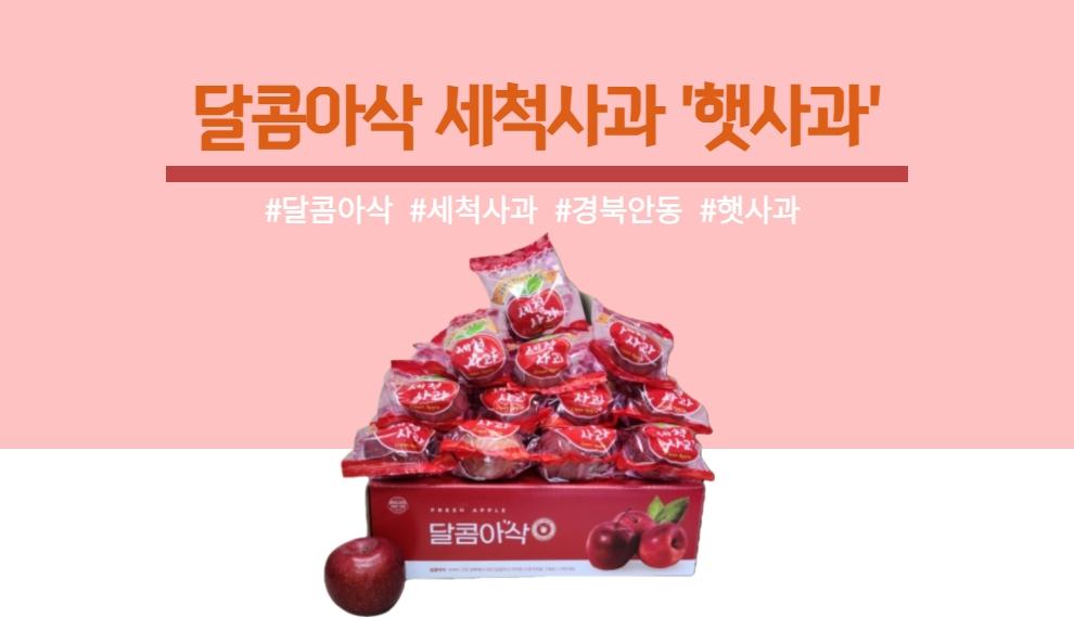 경북 안동에서 첫 수확한 달콤아삭 햇사과