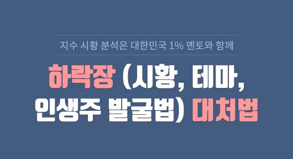 하락장(시황,테마,인생주) 강의